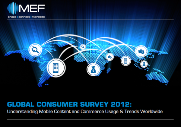 MEF survey cover nov 2012.png